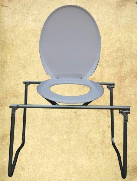 Luxury_Toilet_Ch_49ad0c7553404.jpg